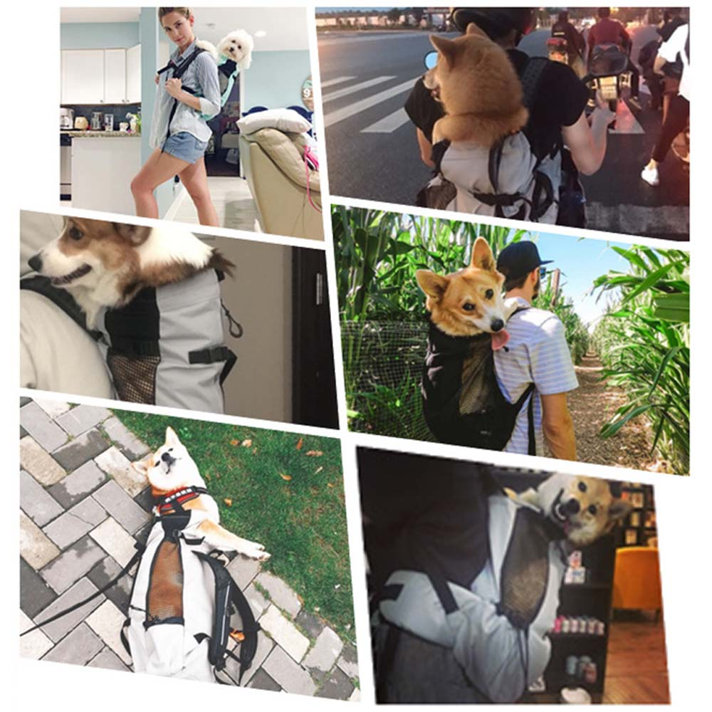 K9 Dog Backpack Carrier 5