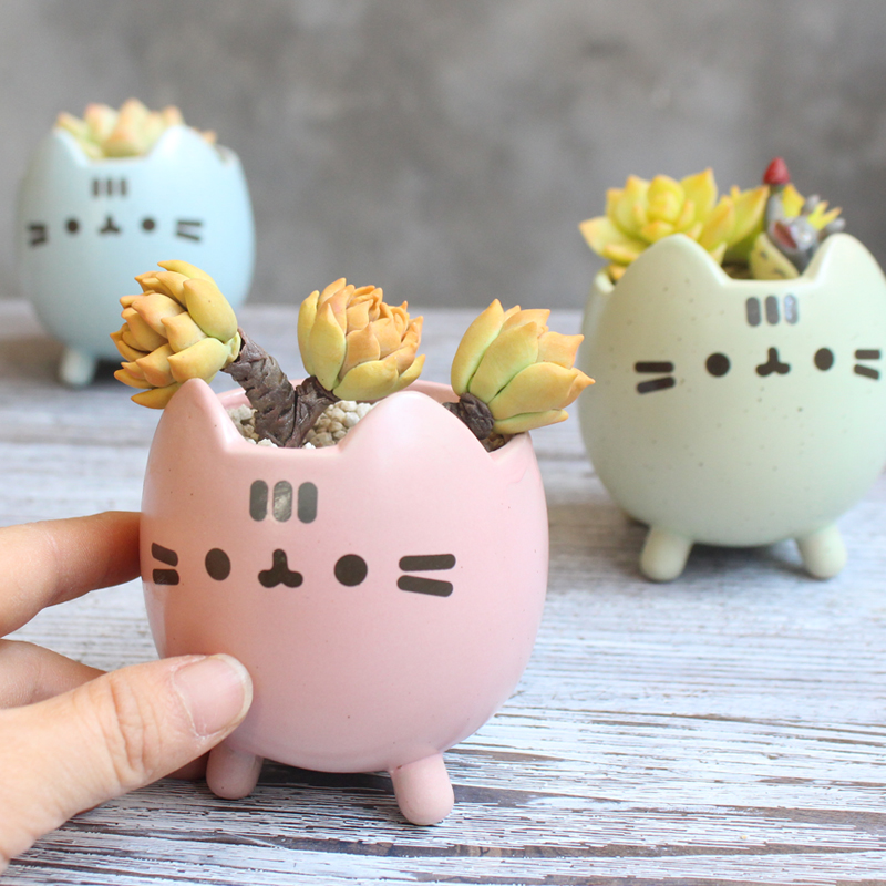 Succulent Plant Pot with Hole Cute Animal Flower Planter Flowerpot Lovely Little Cat Home Garden Decor Bonsai Pots Birthday Gift