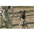 Alta qualidade tactical proteção ao ar livre camuflagem de treinamento do cão trela do cão de tração cinta super dog leash Material de nylon