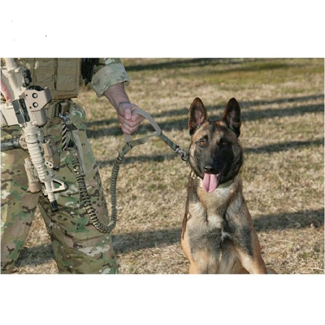 High-quality tactical outdoor protection dog training leash dog traction camouflage nylon strap super dog leash Material