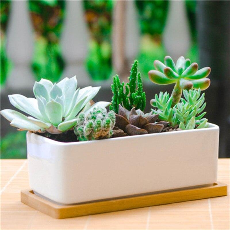 1 Set White Ceramic Succulent Plant Pot Porcelain Planter Decorative Desktop Flower Pot Home Decor(1 Pot + 1 Tray)
