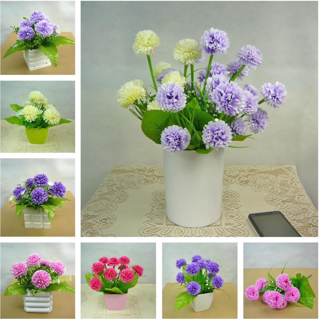 Цветы для офиса настольные