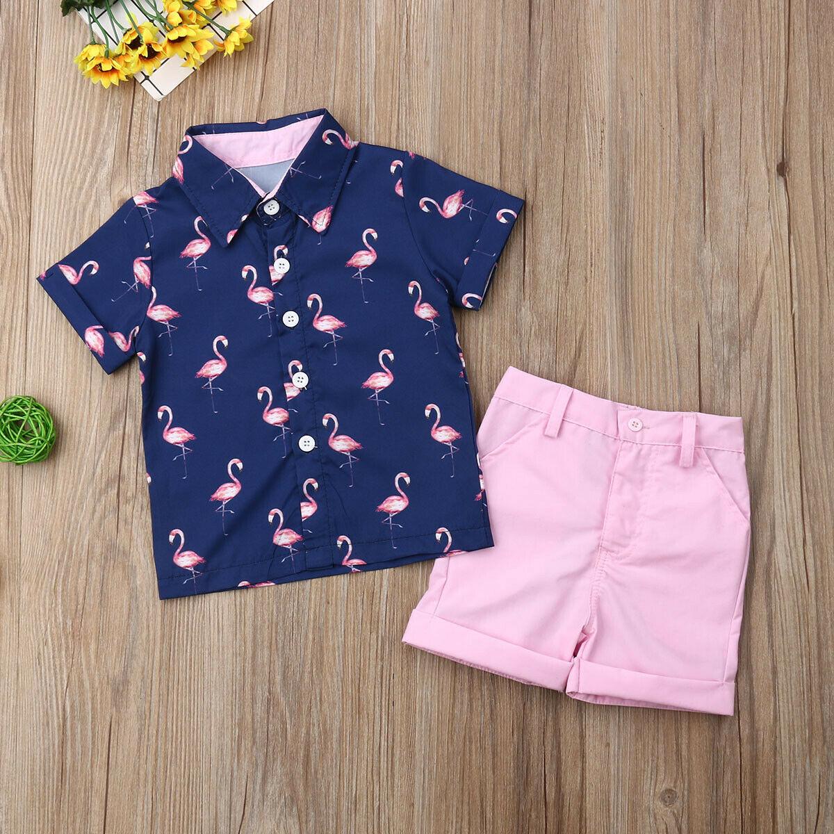 Toddler Kid Baby Boy Clothes Flamingo Shirt Tops Shorts Pants Summer Outfits Set