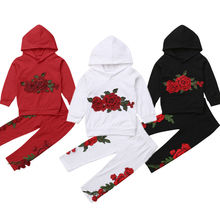 Embroidery Floral Toddler Kid Baby Girl Hooded Tops Sweatshirt Pants Outfits Clothes Tracksuit 2-7T 2019 цена и фото