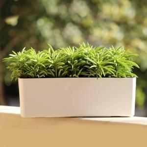 Image 4 - 39 Cm Afneembare Self Watering Kamerplant & Kruid Indoor Rechthoekige Planter Pot Vaas 2 Kleuren