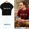 TBBT THE Flash Superhero Mulheres Carta de Impressão T-shirt Roupas Tee do Sexo Feminino Lettering Anime Harajuku Tshirts de The Big Bang Theory
