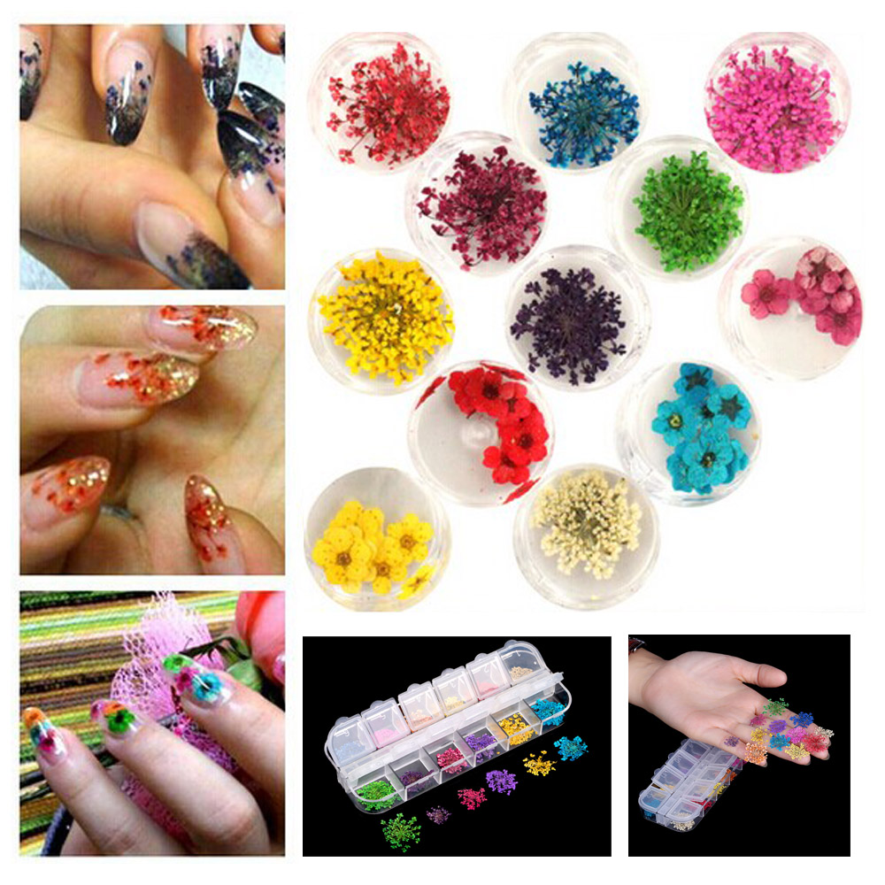 Fashion Nail Art Decoration 12 Colors Real Nail Dried Flowers DIY Tips with Case Small Flowers styling Tools real flower acrylic nails