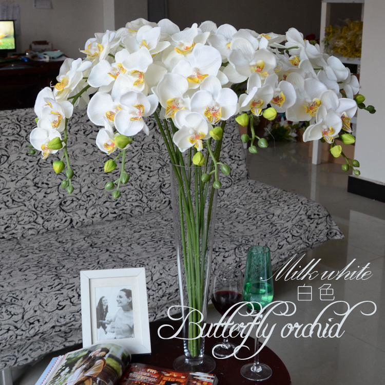 103cm large long beautiful phalaenopsis butterfly moth orchid 20141228124047076 mightylinksfo