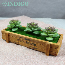 INDIGO (3 Plants+1Tray /set ) Bonsai Green Echeveria  Artificial Succulent Plant Plastic Flower Table DecorationFree Shipping