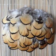 20 шт перо фазана 2-4 натуральная красота 5-10 см