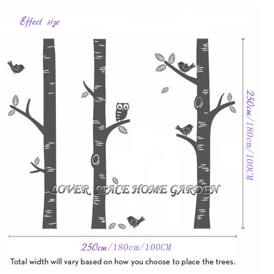 Top Owl Birds Wall Sticker 3 Birch Tree Decals Great For Nursery Baby Room Art Mural Vinyl Decor Stickers In From Home