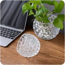Household Decor Glass Vase Micro-landscape Jardiniere Creative Hydroponic Bottle Office Decoration Glass Vases