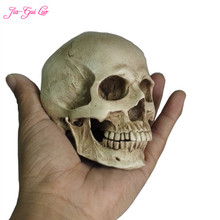 цена JIA-GUI LUO Resin crafts simulation skull painting human muscle anatomy model decorative art decorative bauble B011 онлайн в 2017 году