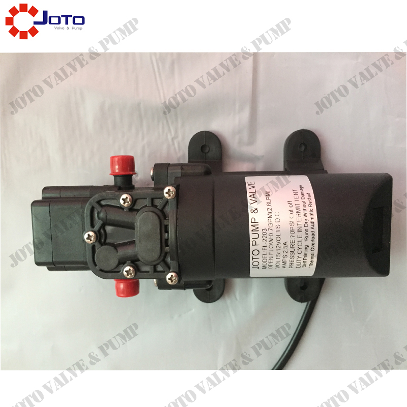 FL2203 Electric Sprayer Pump Agriculture 12V DC Diaphragm Booster Pump