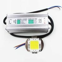 Real Full Watt 100w High Power COB LED lamp Chips Bulb with LED Driver For DIY Floodlight Spot light Lawn