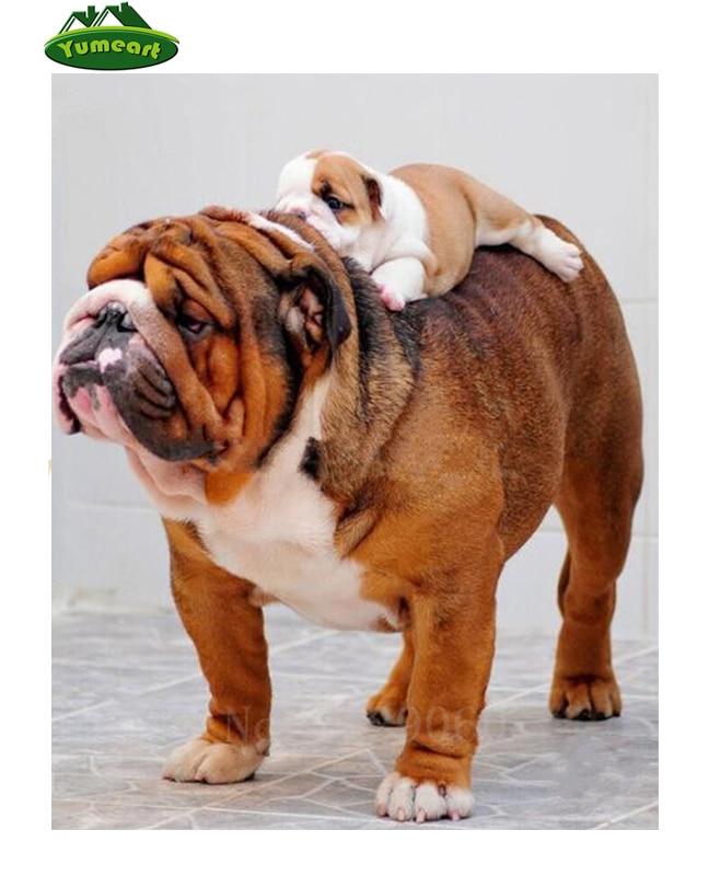 ▻5d DIY Cuadros de punto de cruz diamante Bordado Bulldog y bebé ...