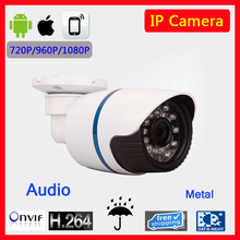 1.0MP 2.0MP  Audio IP Camera ONVIF Waterproof Outdoor IR CUT Night Vision P2P Plug and Play with CMS software