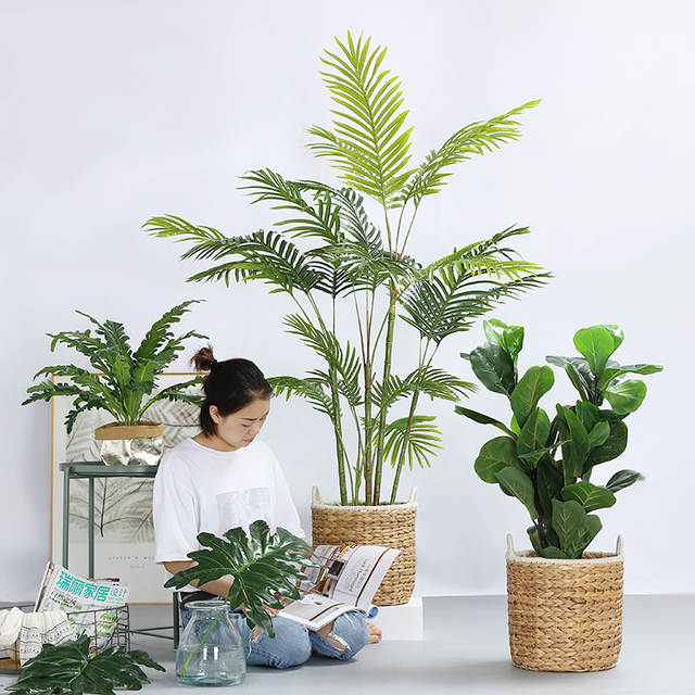 Nordic Simulation Of Large Plants Potted Green Storage