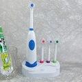 4 Cores 2016 hot sale POC Multi Adultos Crianças conjuntos titular temporizador Atacado Higiene Oral escova de Dentes Elétrica 4 cabeça da escova