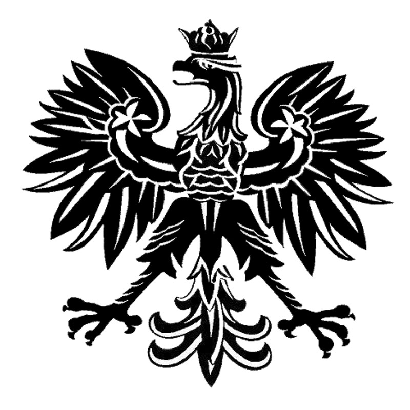 15.2*15.1CM Polish Eagle Poland Symbol Fashion Car Stickers Animal Pattern Car Styling Decal Black/Silver C9-2158