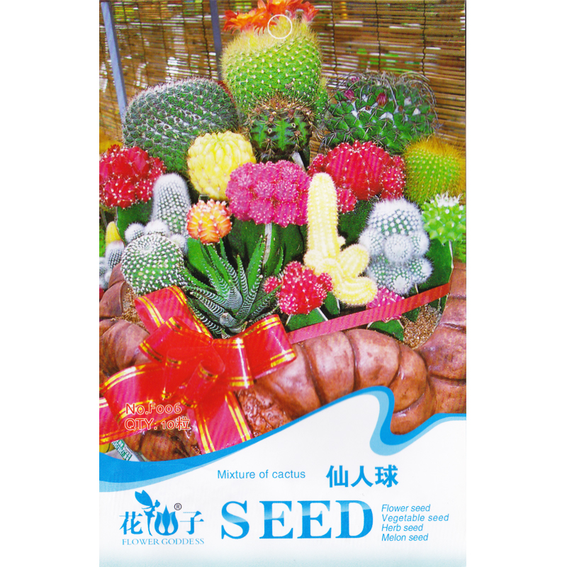 Mixture of cactus * 10 Seeds * Opuntia humifusa * Tender Perennial * Mixed * Succulent plants * Dwarf potted plant * Flower Seed