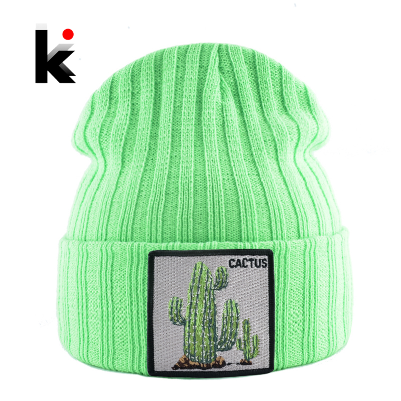 Winter Beanies Hat Woman New Knitted Solid Skullies Beanie Men Casual Bonnet Caps With Cactus Patch Streetwear Gorras Warm Hats
