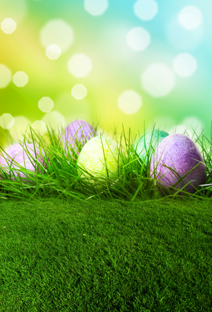 Vinyl Photography Backdrop Customize Easter Children Computer Print Backgrounds for Photo Studio F 084 in Background from Consumer Electronics