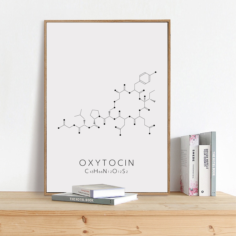 Molecular Structure Canvas Art Picture Office Decor