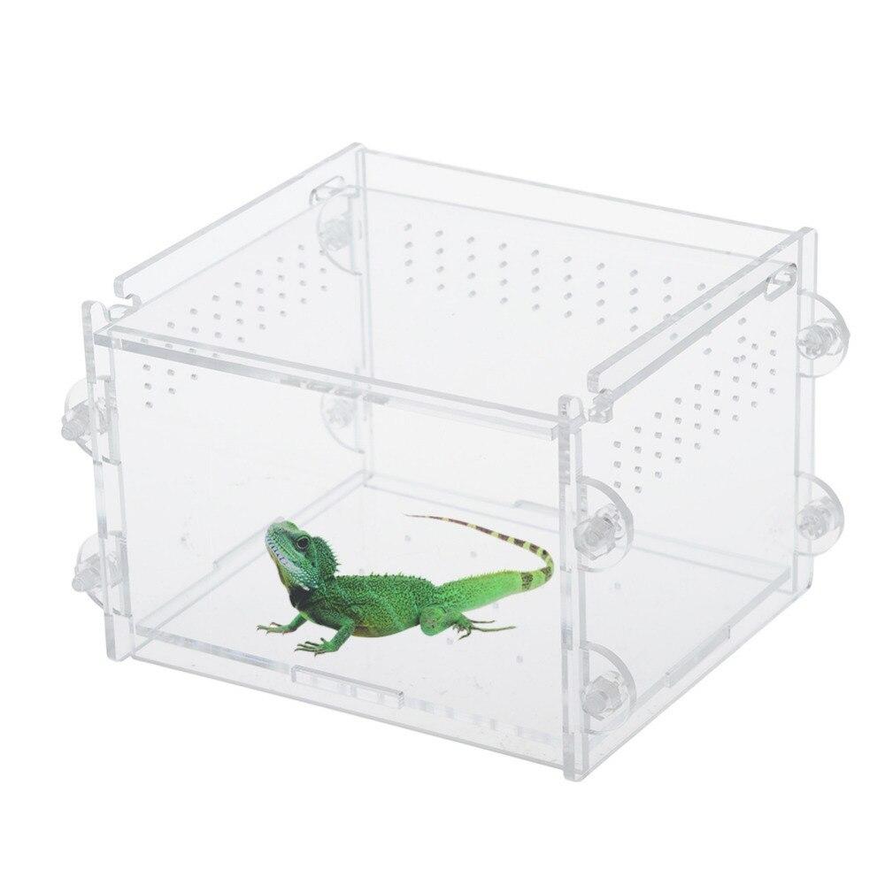 Acrylic Reptiles Terrarium Container Amphibians Larvae Spiders Ants Scorpions Lizards Chameleon Habitat Cage