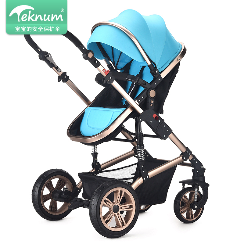 где купить TEKNUM High View Baby Stroller Aluminum Alloy Frame Pram 2 in1 Folding Baby Carriage Shock Proof Trolley Umbrella Baby Car дешево