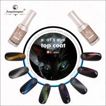 Fengshangmei Easy Soak Off Cat Eye Magnet Nail Polish Cat's-eye Gel Polish Top Coat 12ml