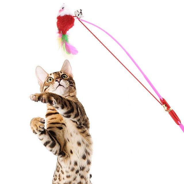 Ungewöhnlich Katze 5 Drahtstärke Fotos - Elektrische ...