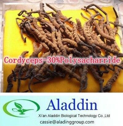 ФОТО Hot sale! 3Bottle Cordyceps-30%Polysacharride 500mg x 270caps free shipping