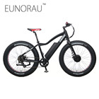 New Ebike 2WD Electric Fat Bike 48V 11AH Lithium Battery Electric Snow Bike Electric Mountain Bicycle Cycling