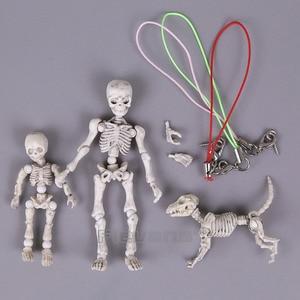 Image 5 - Leuke Mode Ontwerp Mr Botten Pose Skelet Model met Hond Tafel Bureau Boek mini PVC Figuur kinderen Speelgoed Collectible Gift