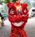 Vermelho chinês leão traje chinês dança do leão leão traje trajes dançarino produto ano novo festival suprimentos engraçado cosplay