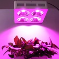 DE Stock  Factory Direct Sale Professional COB Full Spectrum 800w Led Grow Light for Indoor Plant Growth and Flowering