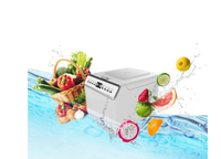 fruit vegetable 360 DEddy Plasma  Current Detoxification machine ultrasonic fish seafood machine disinfection Vegetable Washers     -
