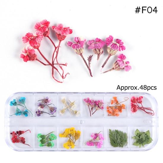 Сухоцветы лист ногтей украшения натуральный наклейка в виде цветка 3D сухой для маникюра ногтей наклейки ювелирные изделия УФ Гель-лак Маникюр TRFL-1 - Цвет: F04
