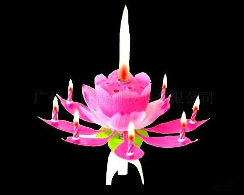 Birthday Candles With Music And Flowers Crafts 48discount EMS Gift