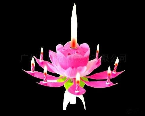 Birthday candles with music and flowers-crafts-candles-48%discount EMS-birthday gift