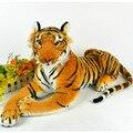 30 см / 12 '' милый тигр плюшевые игрушки прекрасный кукла моделирование угреватой животных подушки детей детские игрушки подарки на день рождения