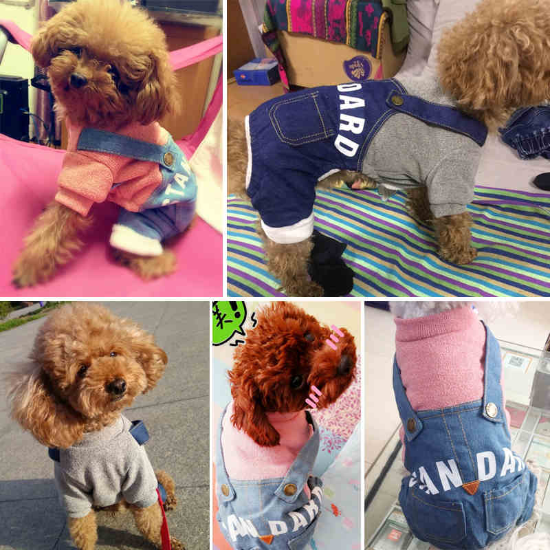 Pet Dog Clothes Clothing for Dogs Summer Dog Jumpsuit for Dogs Cartoon Fleece Pets Products Yorkies Pet Clothes py0303 (44)