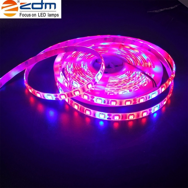 5m waterproof 72w 300pcs plant light strip led grow lights growing 5m waterproof 72w 300pcs plant light strip led grow lights growing led light strip 5050 ip65 mozeypictures Image collections