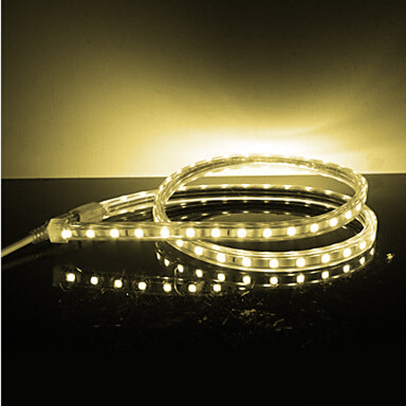 Сыртқы үй безендіру үшін SMD5050 су - LED Жарықтандыру - фото 6