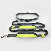 New Multi-Functional Dog Leash Retrackable Reflective Double Elasticity 4 Color Padded Waist  Quality