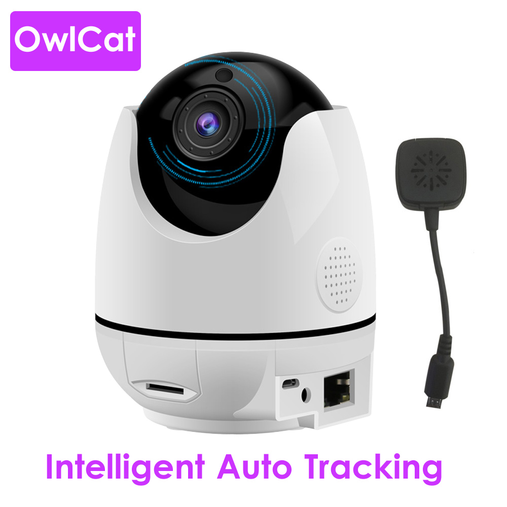 Wireless Smart Intelligent Human Body Auto Tracking Dome IP Camera WiFi Temperature Humidity Display Two Way