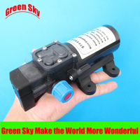 5l/min 60W 12v dc automatic pressure switch type with on/off button and dc jack chemical diaphragm pump