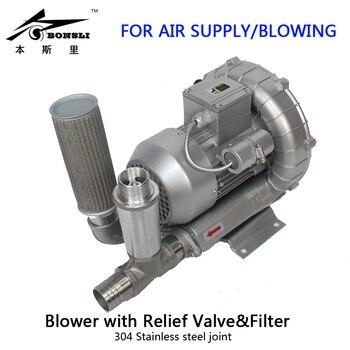 370 Watt Trifase Pompa Del Vuoto Industriale Anello Canale Laterale Blower Con Valvola Di Sicurezza E Filtro