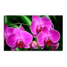 Orchidee 50×30 Handwerk Direct Selling Baumwolle Neues freies Verschiffen Hand Diy Diamant Malerei Kit 3d Voll Stickerei